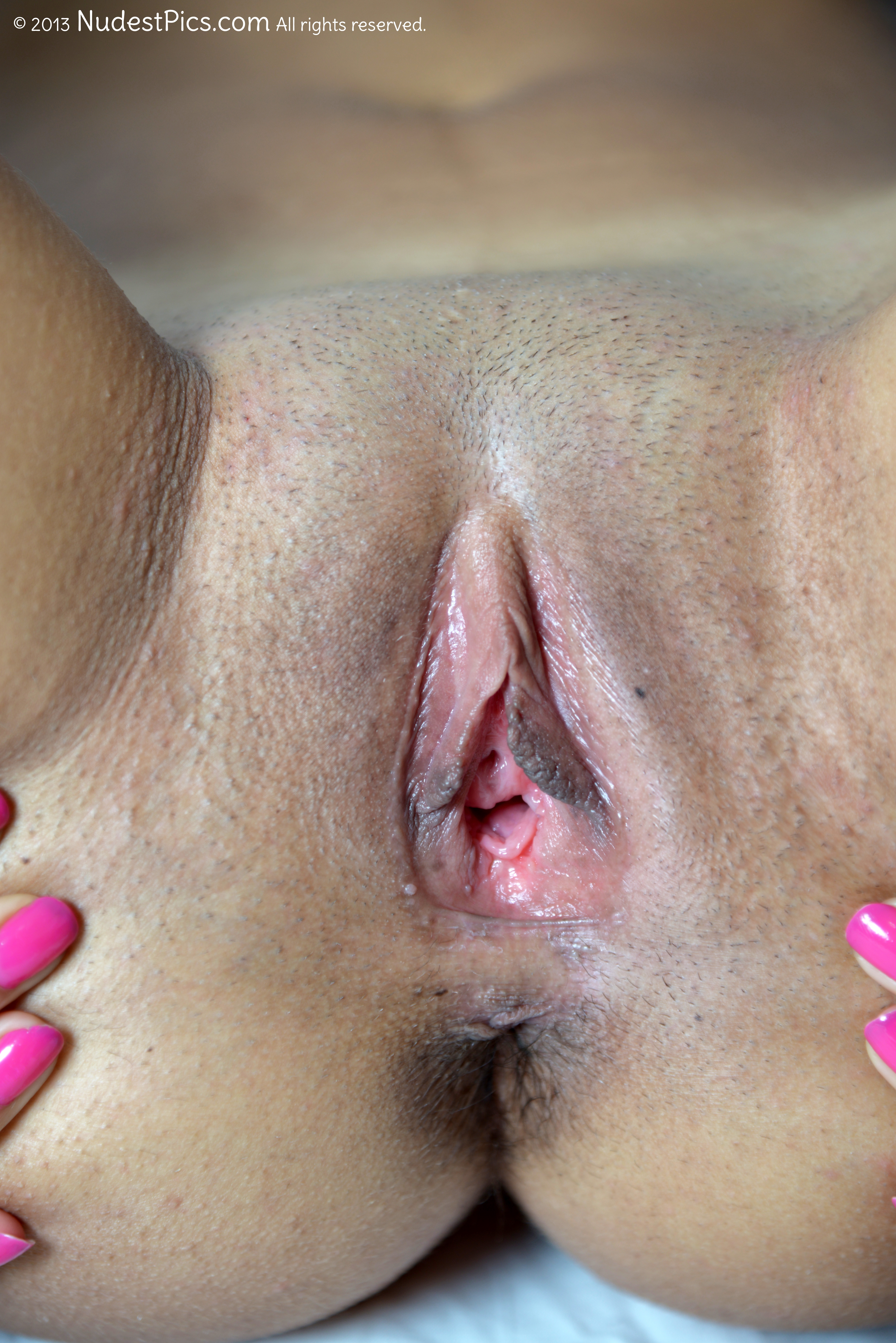 Pink Vagina Hole Spreading HD