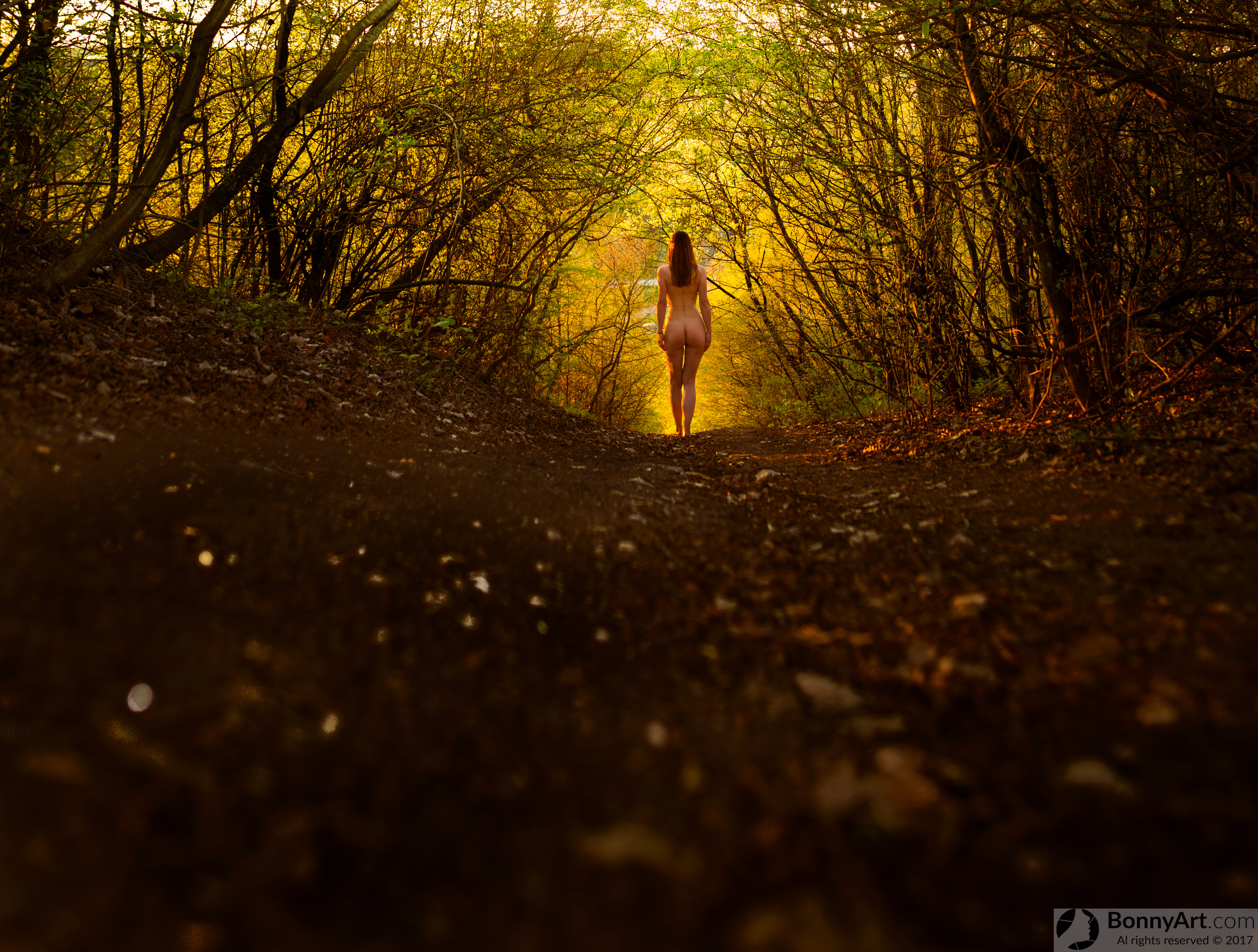 Starring at the yellow light path in the woods artistic nude girl HD