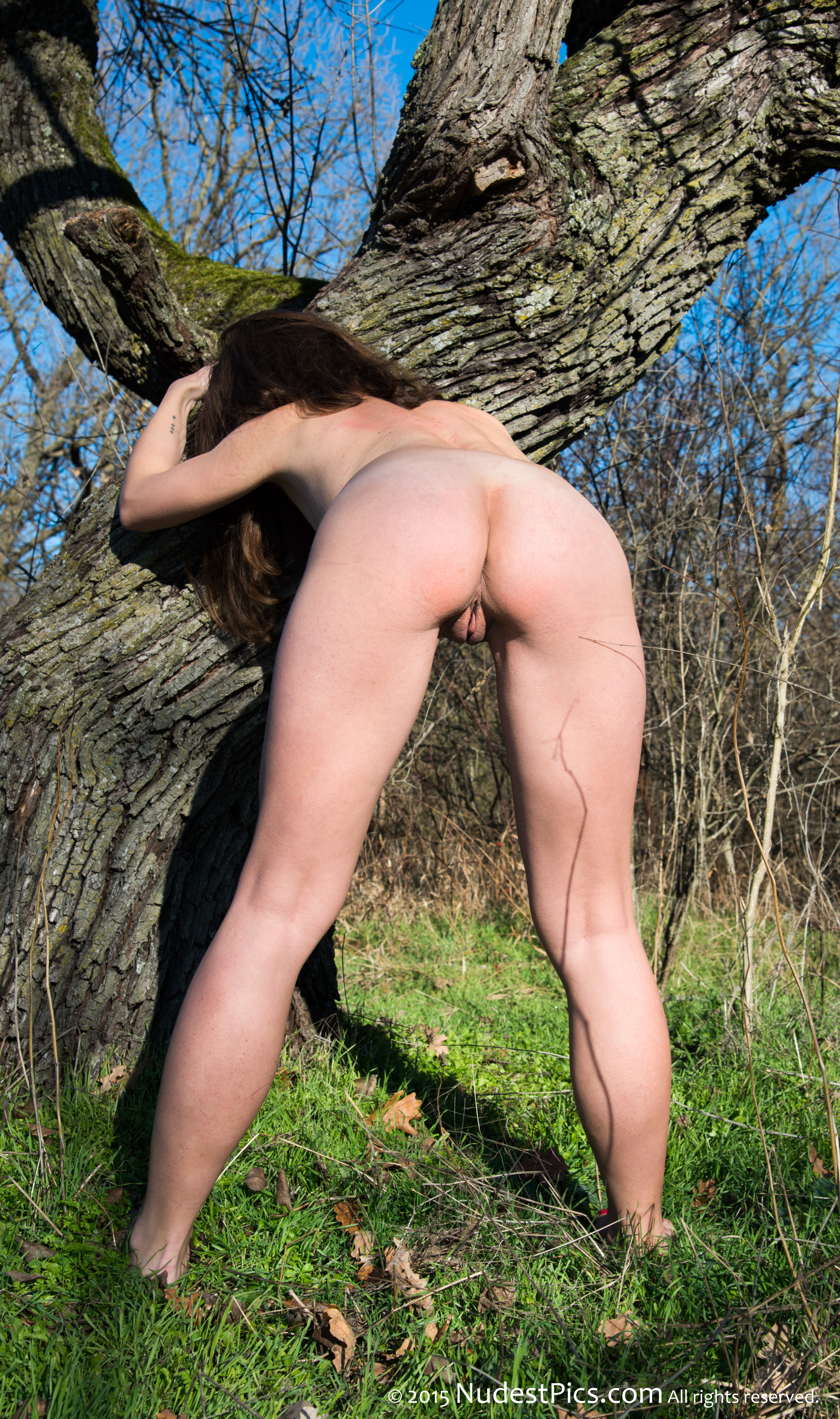 Naturist Girl Bends Over in the Forest