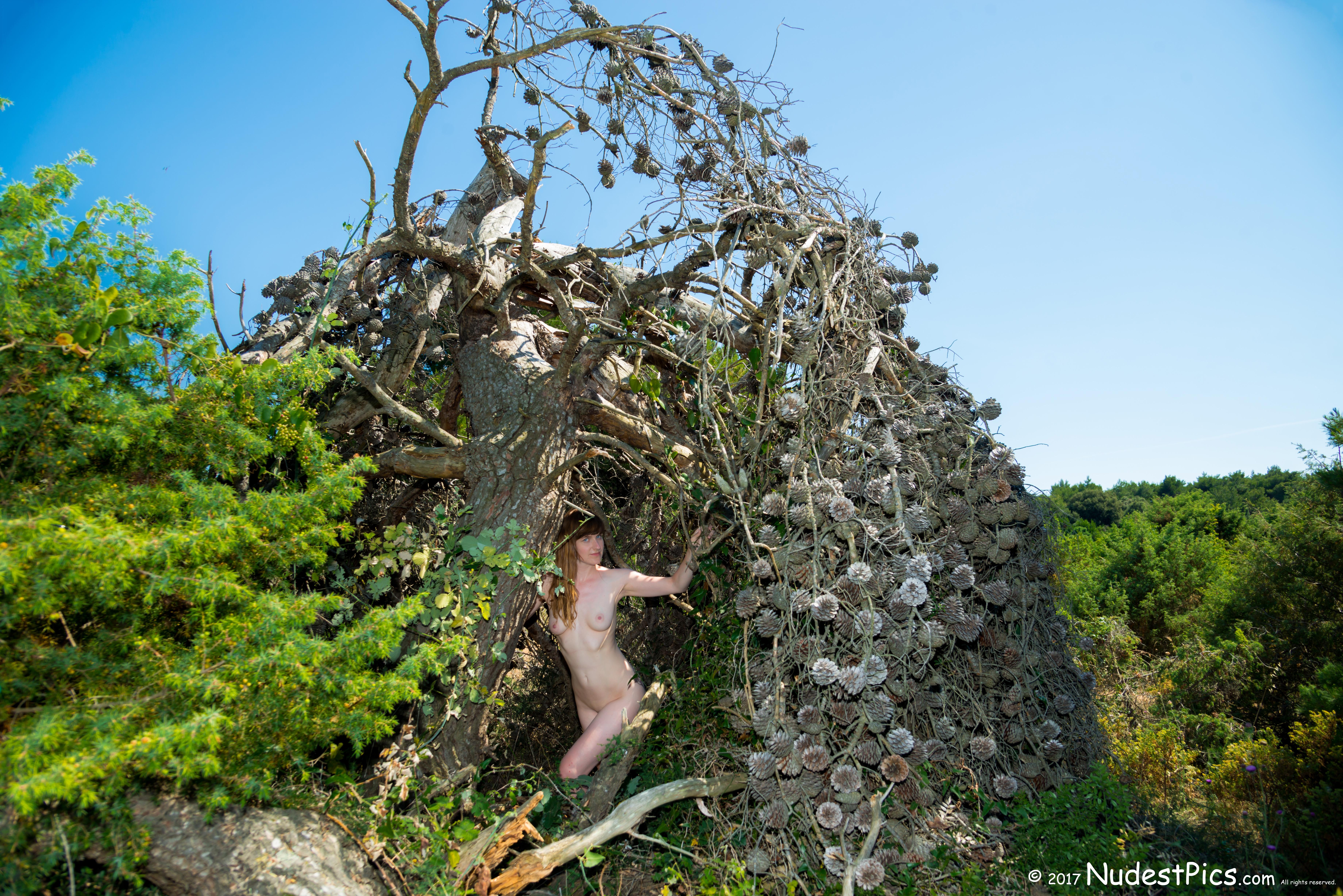 Nudist Girl in her Wild Hut HD
