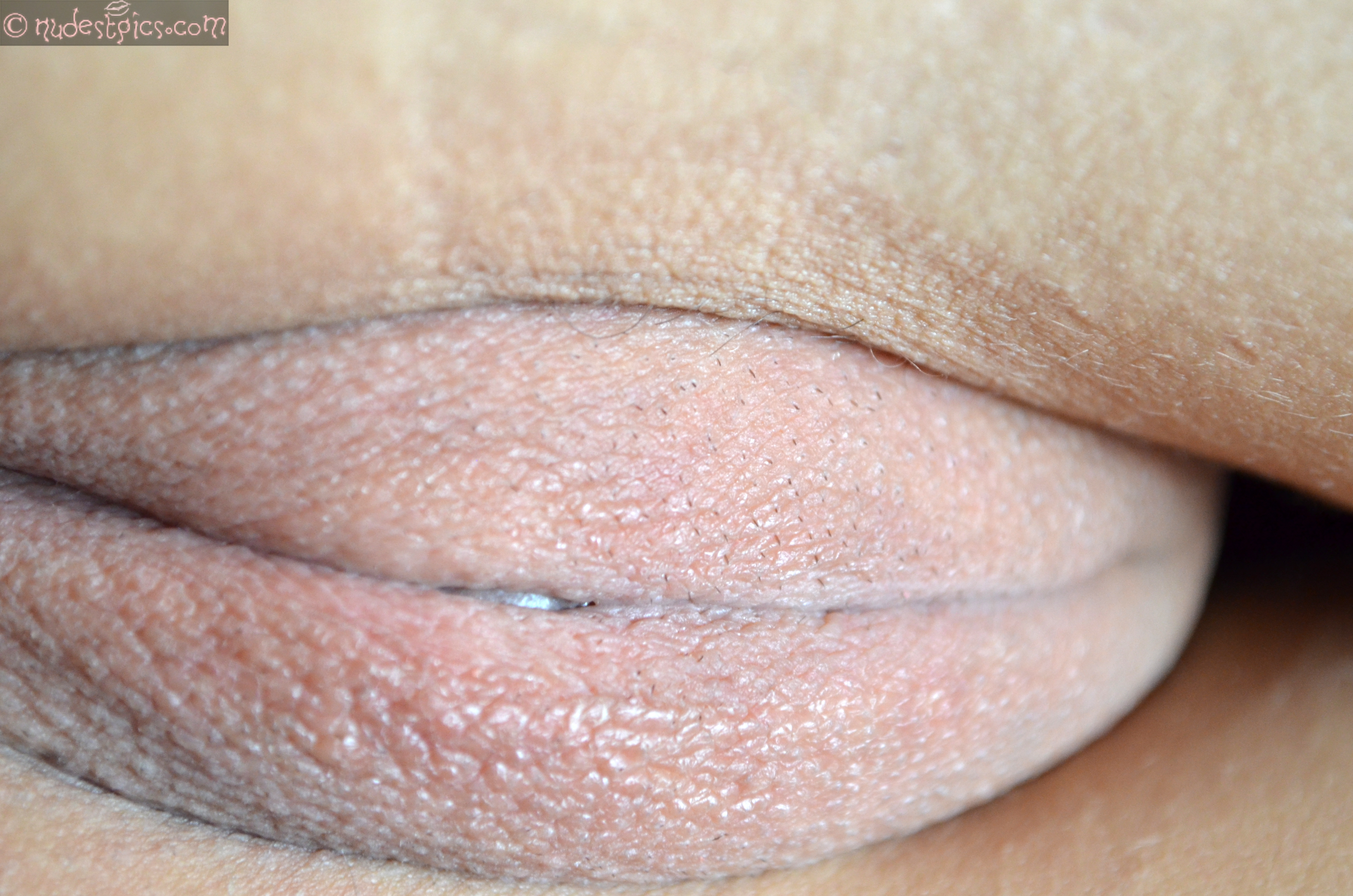 Outer Labia Close-Up