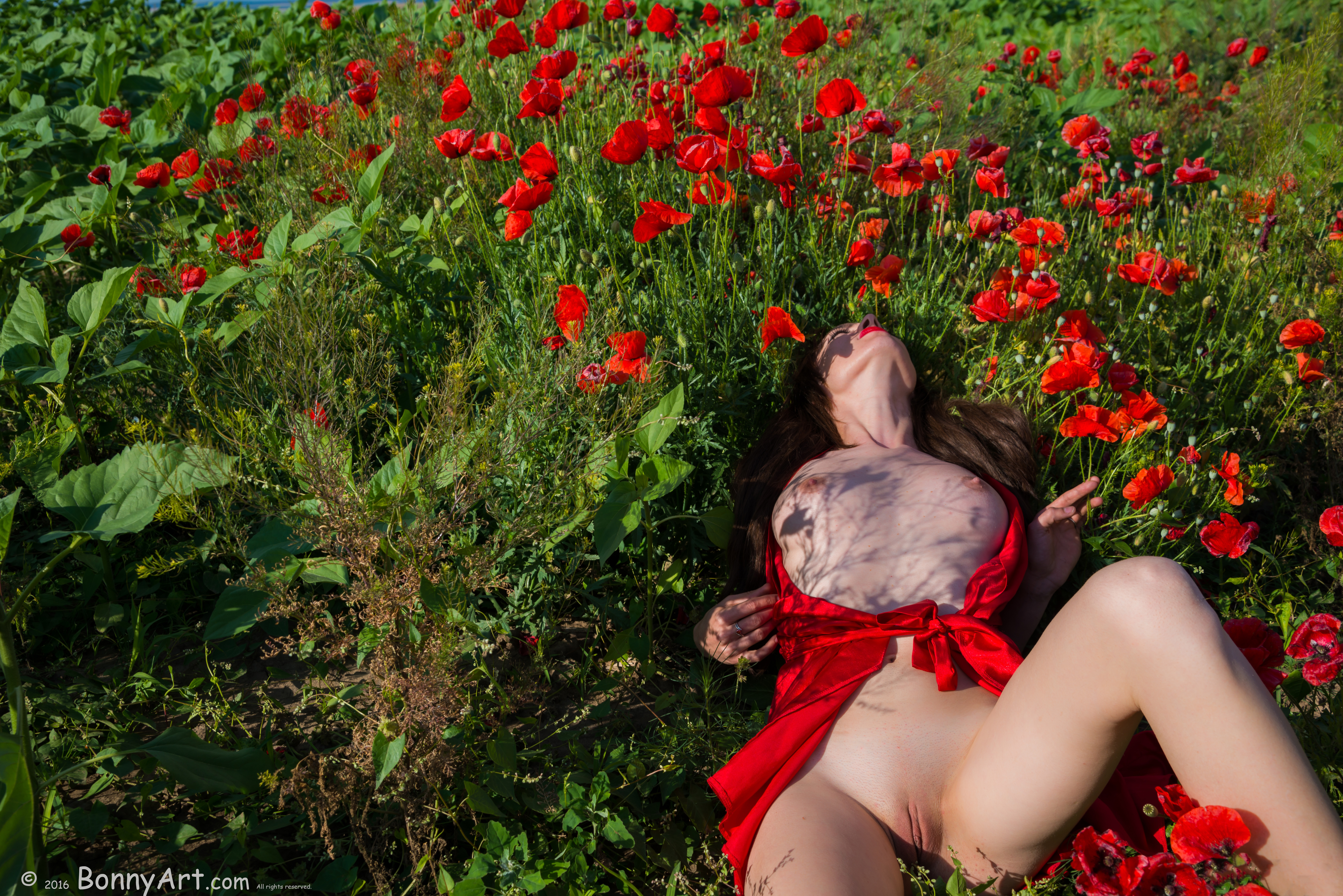 Moaning Girl Undressing in the Poppies HD
