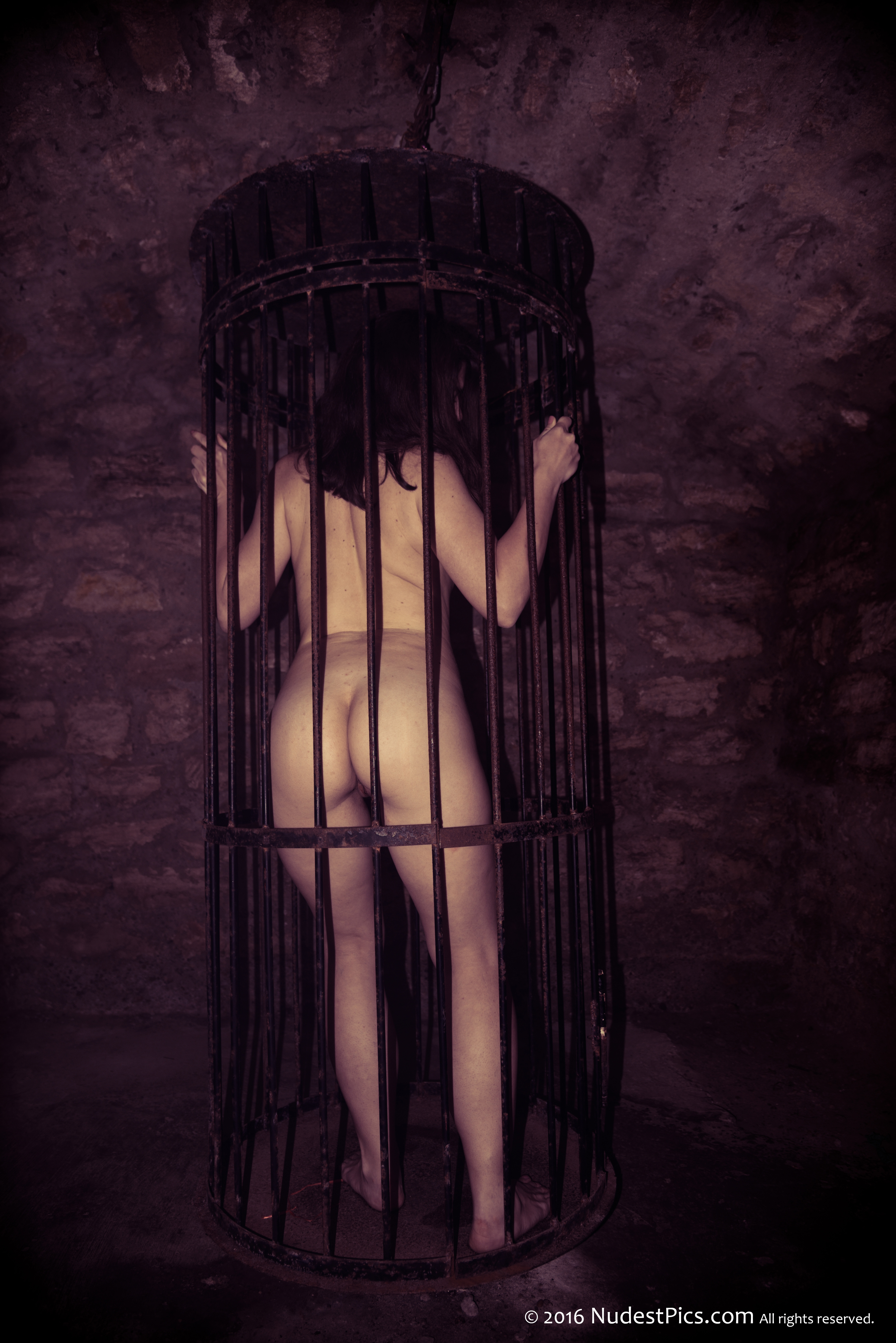 Nude Gothic Girl in a Cage from Behind full HD