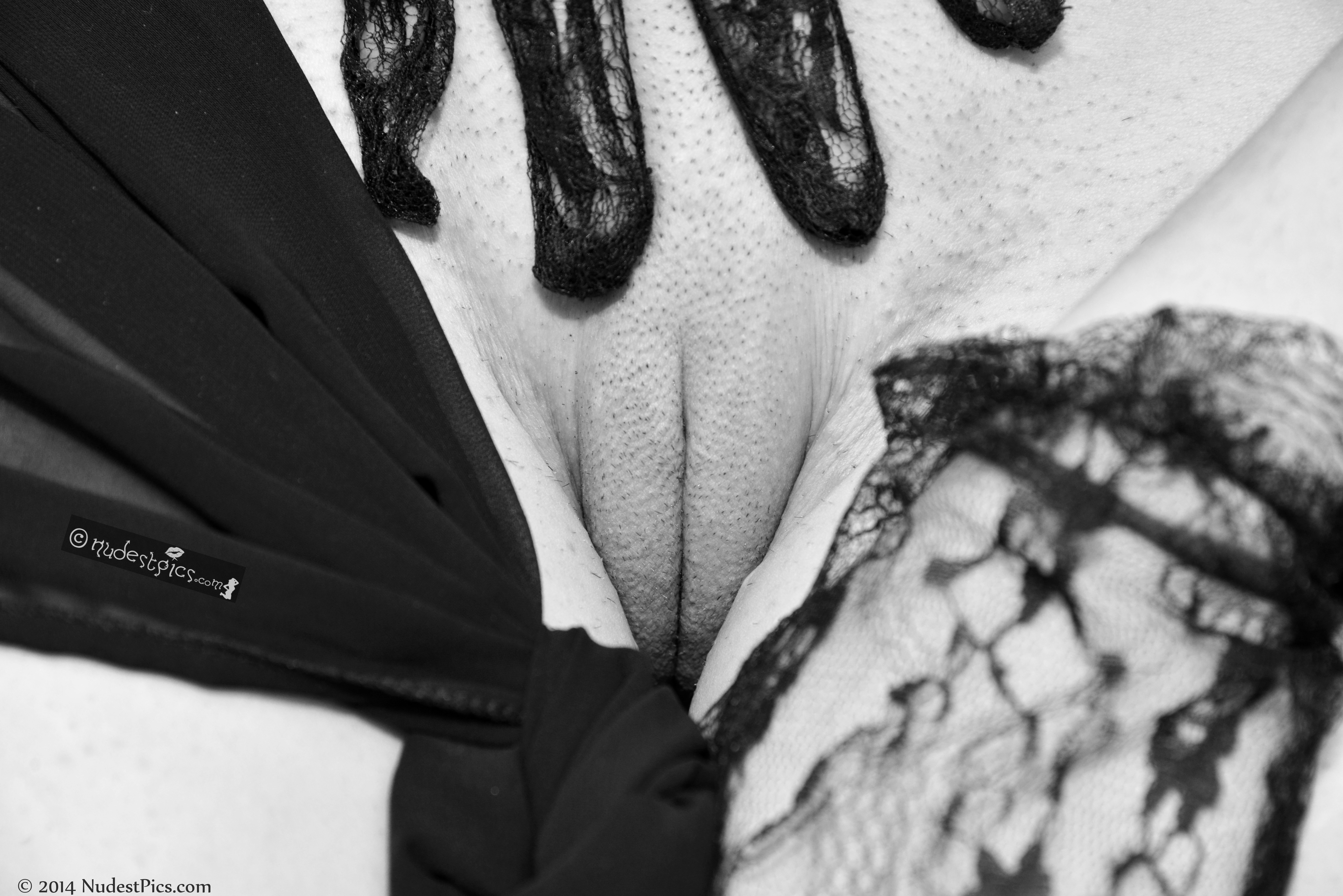 Burlesque Pussy Close-Up
