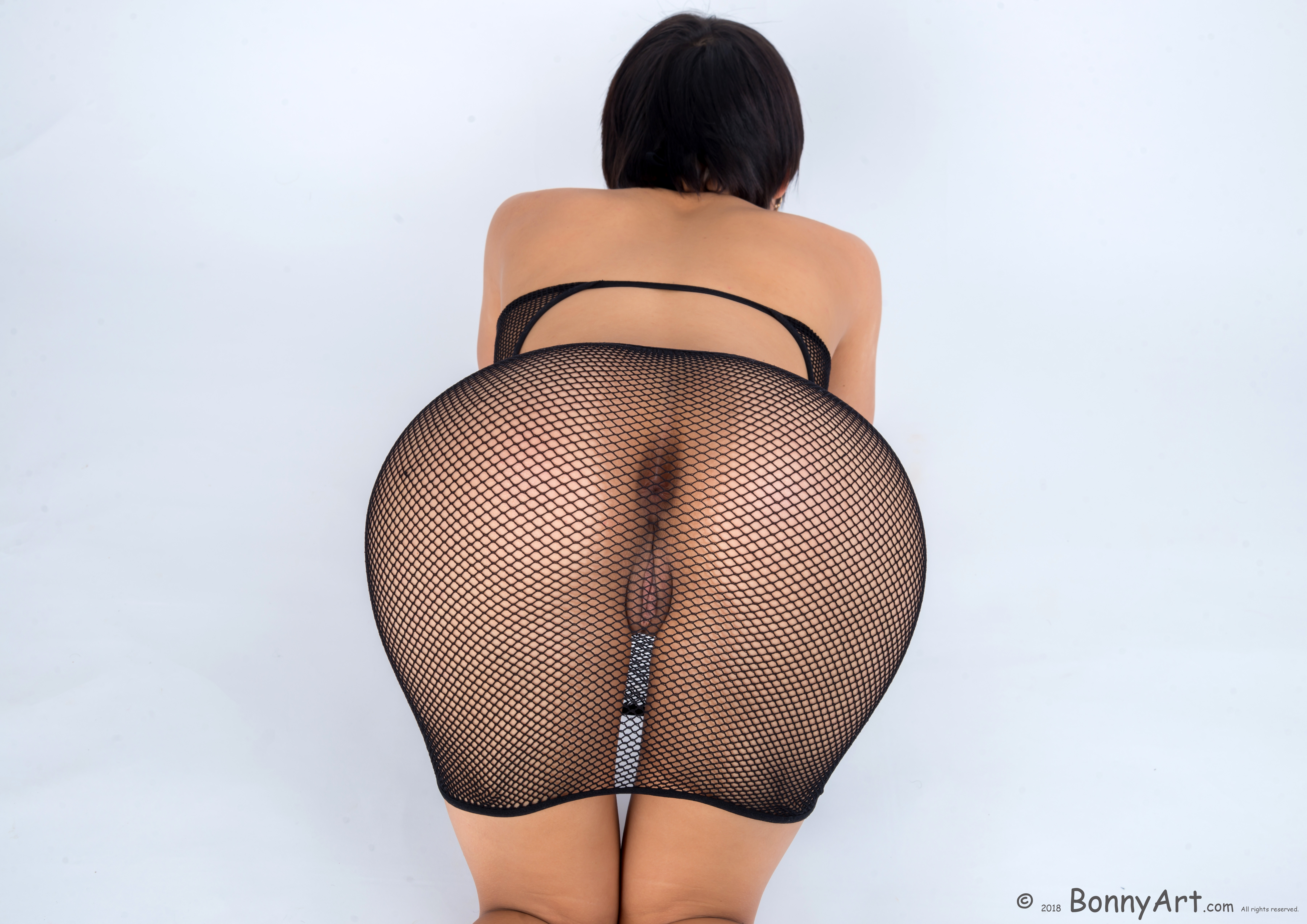 On all fours Pussy through Sheer Fishnets Dress HD