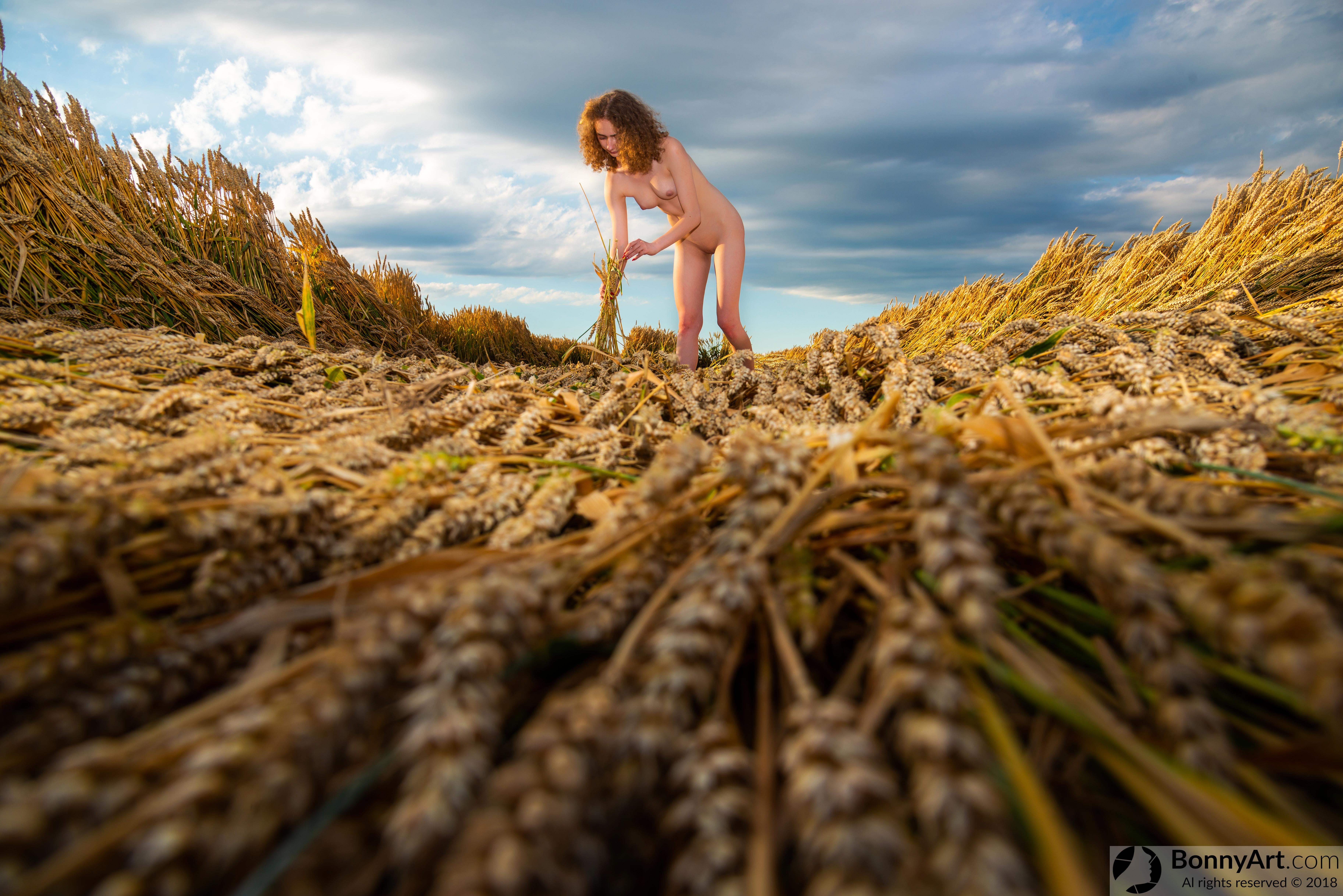 Nude Teen Girl Harvesting Wheat Crop HD
