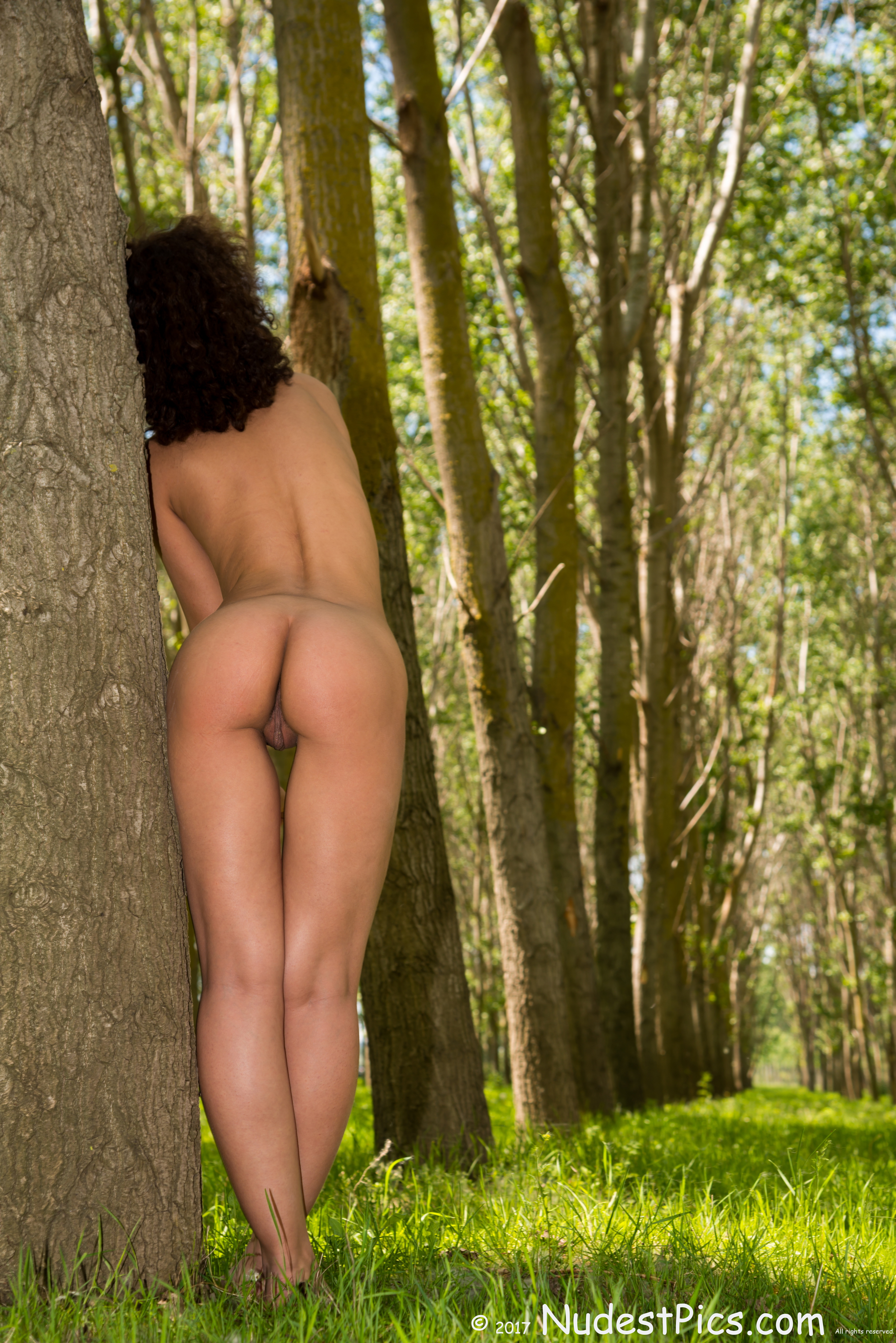Nudist Gal's Behind in the Tall Woods HD